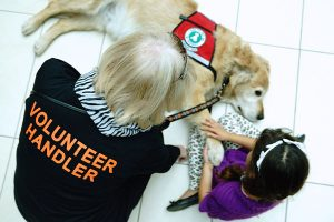 Exploring Children's Perceptions of an After-School Canine-Assisted Social and Emotional Learning Program: A Case Study